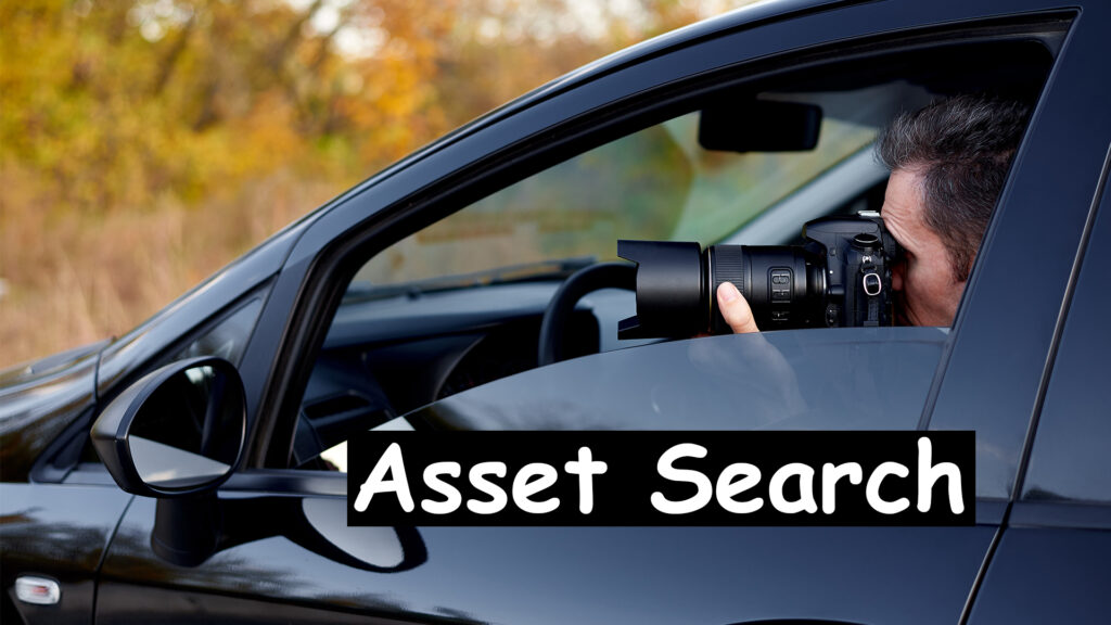 Asset Search Private Investigations